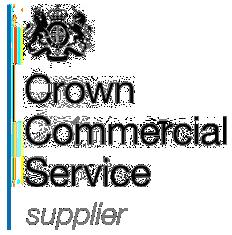 SEO Services G-cloud 12 digital marketplace