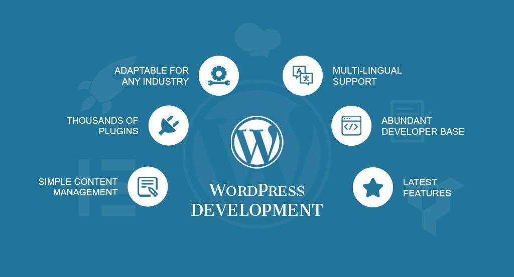 Wordpress Web Designer